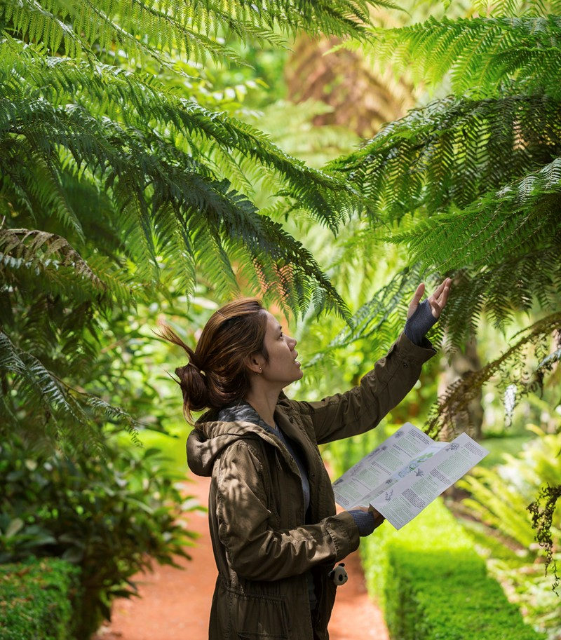 Woman outdoors examining a branch with botanical reference leaflet in hand